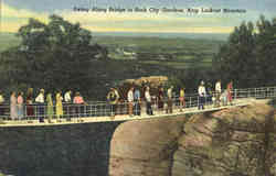 Swing Along Bridge, Lookout Mountain
