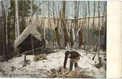 Making Camp in the Maine Woods Postcard