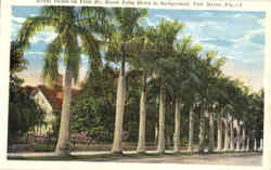 Royal Palms on First St., Royal Palm Hotel in Background