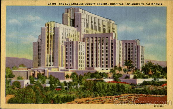The Los Angeles County General Hospital California