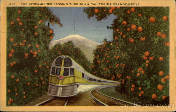 The Streamliner Passing Through A California Orange Grove