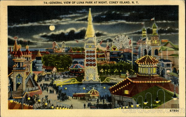 General View Of Luna Park At Night New York