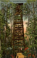 Observation Tower, Oketenokee Swamp Park