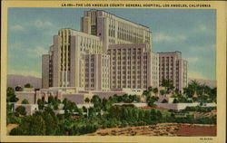 The Los Angeles County General Hospital