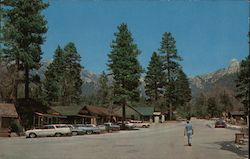 Circle Drive in Idyllwild, California
