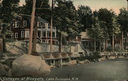Cottages at Blodgetts, Lake Sunapee Postcard