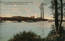 The West Virginia Pulp & Paper Co's Plant