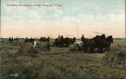 Canadian Harvesting Scenes : Reaping Wheat