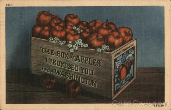 The Box of Apples I Promised You from Washington Fruit