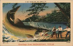 It May Sound Big, But Here It Is - Three Men Land a Giant Fish Postcard