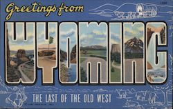 Greetings from Wyoming Postcard