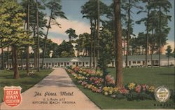 The Pines Motel Postcard