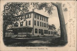The Elmwood Postcard