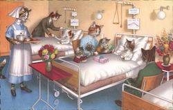 Cats Visiting Cats in the Hospital