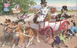 Cats in a Wagon Being Pulled by Dogs