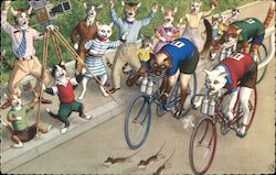 Cats Riding Bikes and Other Cats Watching Mice Running In Front