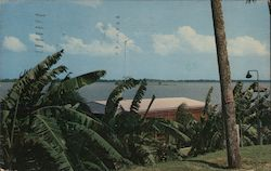 Indian River Postcard