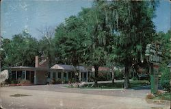 Holly Hill Court 721 Ridgewood Ave. Postcard