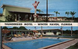 Thunderbird Motel - Winter Haven, Florida Postcard