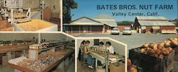 Bates Bros. Nut Farm