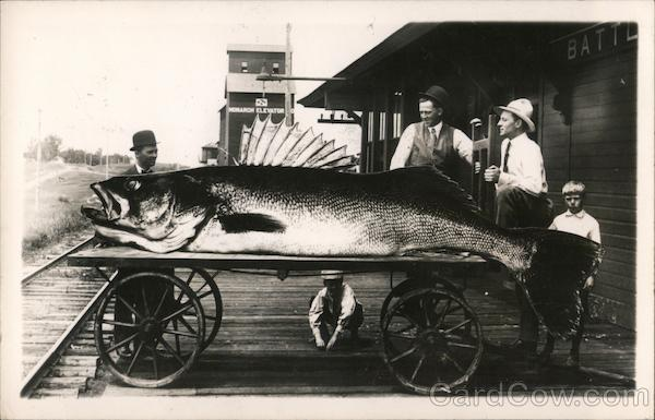 Giant fish on a wagon Exaggeration