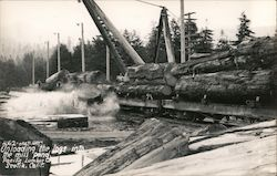 Unloading Logs Into the Mill Pond - Pacific Lumber Company