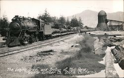 The Loging Train and Section of Mill Pond Pacific Lumber Co