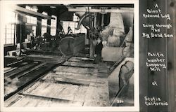 Giant Redwood Log Going Through Band Saw - Pacific Lumber Company Mill