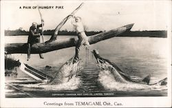 A Pair of Hungry Pike Postcard