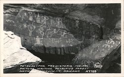 Petryglyphs, Petrified National Monument Postcard