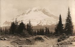 Mt. Hood Loop From Government Camp, Alt. 11,225