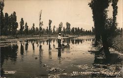 Boating Down a Xochimilco Canal Postcard