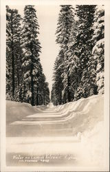 Winter on Lassen Volcanic Highway Postcard