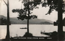 Lake Dunmore from Atkins Shore Postcard