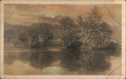 Trees Along Water, Tinted
