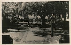 Mineral Springs Hotel, Patio Postcard