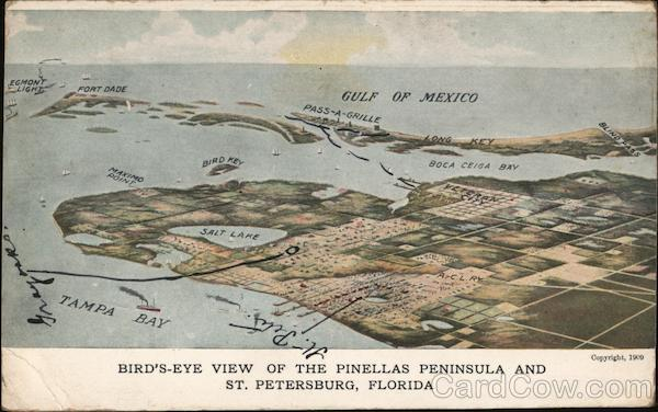 Bird's-Eye View of the Pinellas Peninsula and St. Petersburg Florida