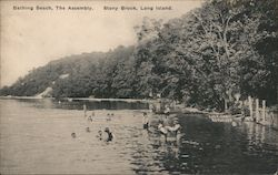 Bathing Beach, The Assembly Postcard