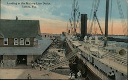 Loading at the Mallory Line Docks