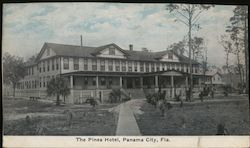 The Pines Hotel Postcard