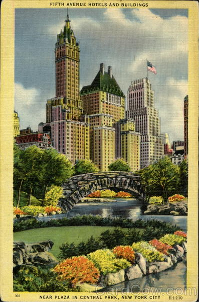 Fifth Avenue Hotels And Buildings, Plaza In Central Park New York City