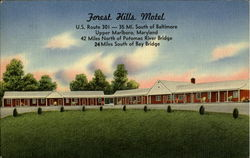 Forest Hills Motel, U. S. Route 301