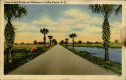 Palm Lined Boulevard Entrance To Folly Beach