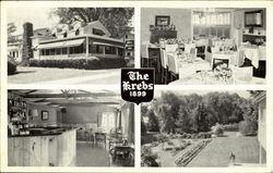 The Krebs Postcard