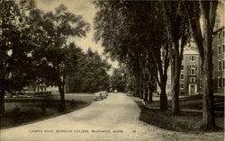 Campus Road , Bowdoin College