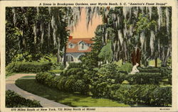 A Scene In Brookgreen Gardens, Mt. Battie
