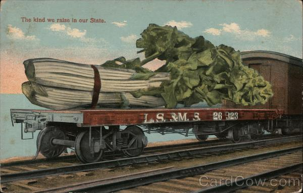 The kind we raise in our State. - Giant Celery on a Rail Deck.