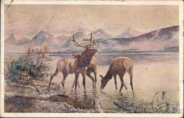 Elk in a Lake, Russell Art F. H. Cronkhite Charles Marion Russell