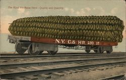 "Giant corn on a train: ""The kind we raise here - quality and quantity Postcard"