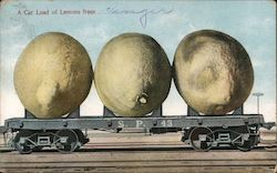 Railroad Car with Three Giant Lemons Postcard